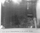 tactical-trials-strv-81-20